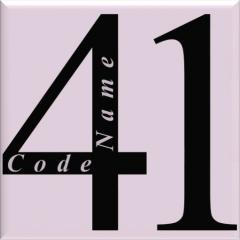 SAS CodeName41®